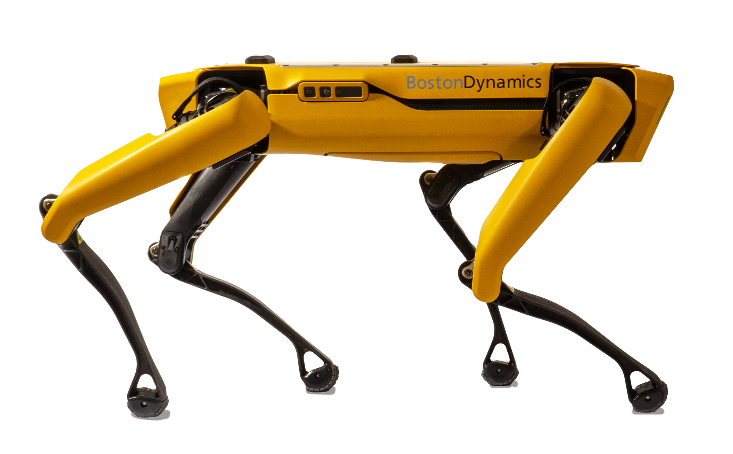 SpotMini-Boston Dynamics Robot Dog